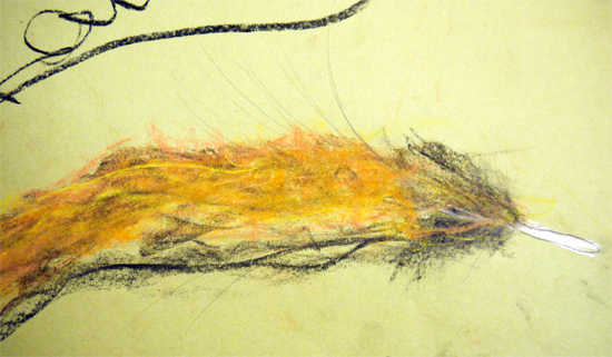 Oil Pastel and Graphite Feather Drawn by Six Year Old