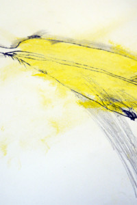 Oil Pastel and Graphite Drawing of Feather by Child