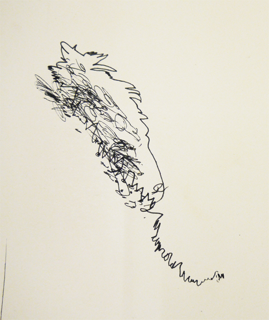 Blind Drawing of a Feather