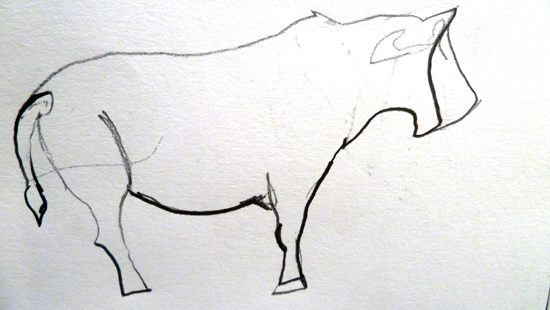foreshortening and volume in line drawings: Foreshortened Cow by Jasmine