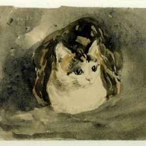 Line and watercolour studies of soft toys, inspired by Gwen John's watercolour cat paintings.