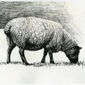 Sheep Grazing 1972 Page from Sheep Sketchbook HMF 3349 ballpoint pen, felt-tipped pen 210 x 251mm photo: The Henry Moore Foundation archive Reproduced by permission of The Henry Moore Foundation archive