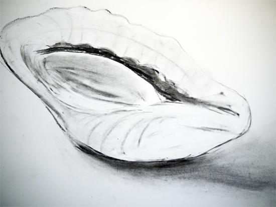 Charcoal Shell