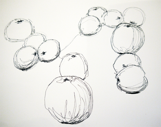 Continuous Line Drawing of Apples