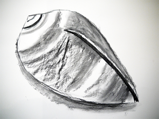 Large Charcoal Shell