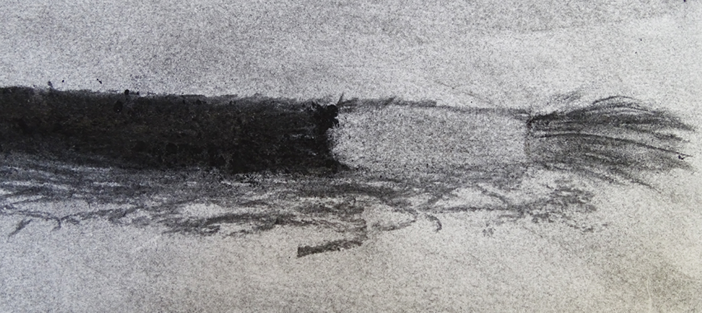 drawing brushes with charcoal