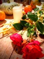 Halloween Still Life - Roses