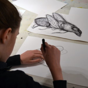Drawing insects with black pen