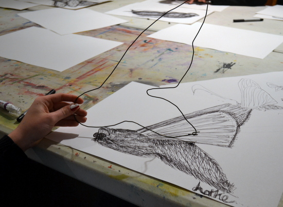 Drawing insects in wire: Lottie makes her wire 'drawing' inspired by her continuous line drawing of a moth