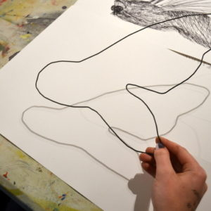 Students were given a piece of modelling wire (approx. 1m long) and were asked to use the wire to 'draw' an insect. The purpose of this exercise was to help 'see' and draw form and to make line drawings whilst really thinking about the quality of line achievable in black pen.