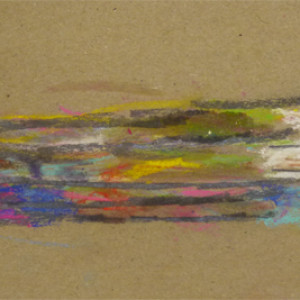 Using soft pastels and graphite to create layered drawings of form and colour.