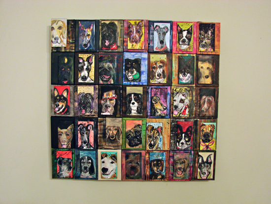 1000 dogs project by Kathryn Sjogren