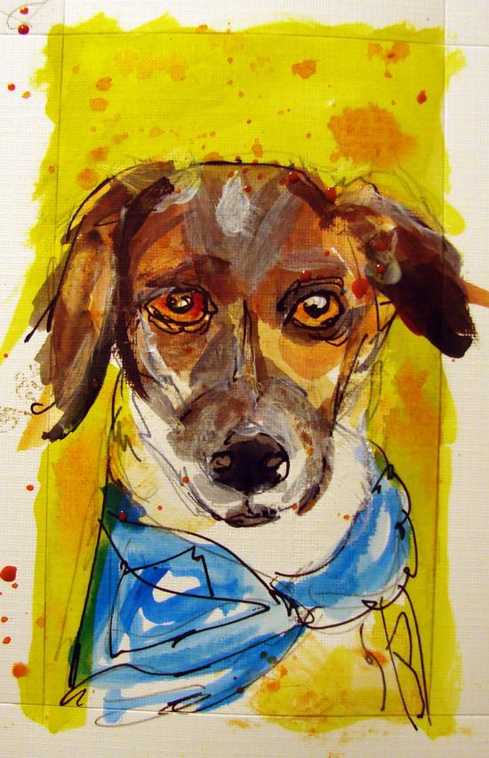 1000 Dogs Project By Kathryn Sjogren