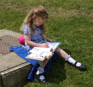 Sketchbooks in Primary Schools – Curriculum Planning
