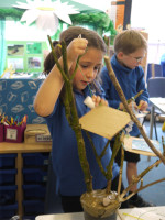 Each child made their own treehouse