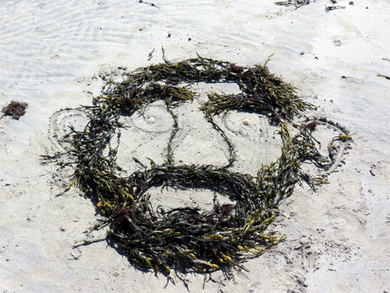 By Ben Wormald, Seaweed drawing on the beach