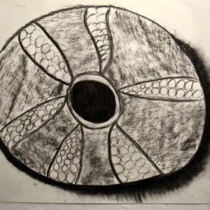 Amy's 'Sea Urchin', A1 in charcoal