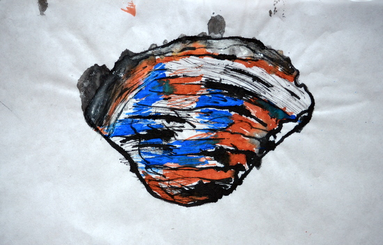 Kitty's final drawing in ink of an Ocean Quahog on loan from the University Museum of Zoology, Cambridge