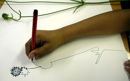 Drawing and making flowers. Students concentrate on looking and let the marks follow