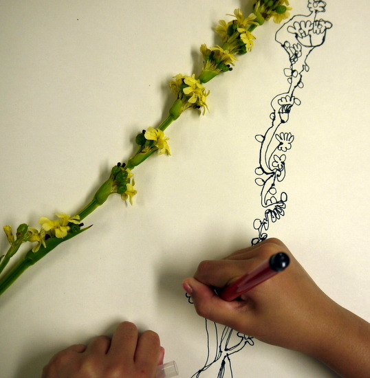 A beautifully structured resource which shares how drawing can be used to enable children to familarise themselves with flower anatomy. Children are given the opportunity to develop their observations and ideas in three dimensions by making flowers with paper and wire.