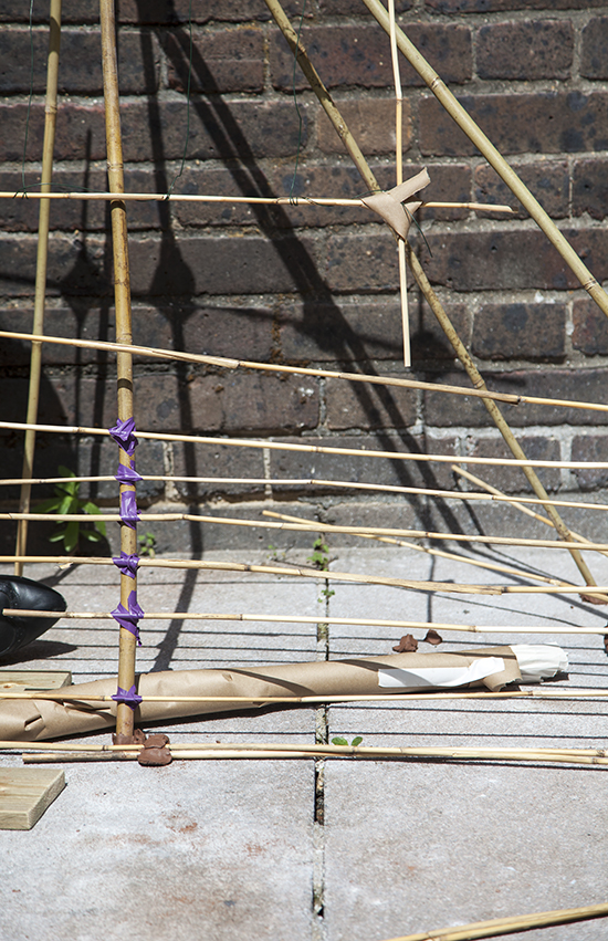 Detail - working in garden cane and purple electrical tape