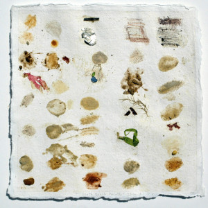 A palette drawn on Khadi paper. (a hand made indian paper that is really tough and flexible). Sea weed, litter, natural earths, clays and sands from the site.