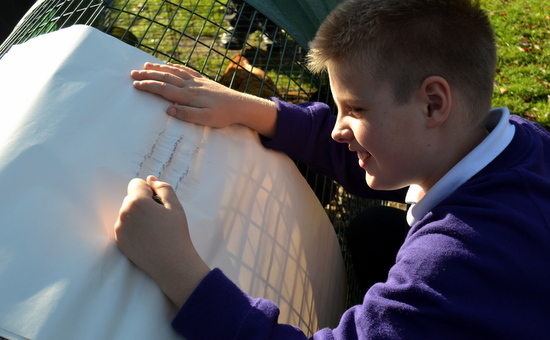 Pupil taking a rubbing of the chicken coup!
