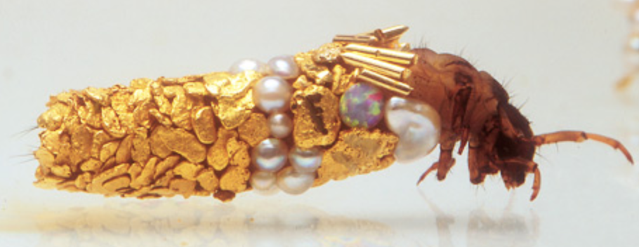 French artist Hubert Duprat worked in partnership with caddis fly larvae to create these wonderful living works of art.