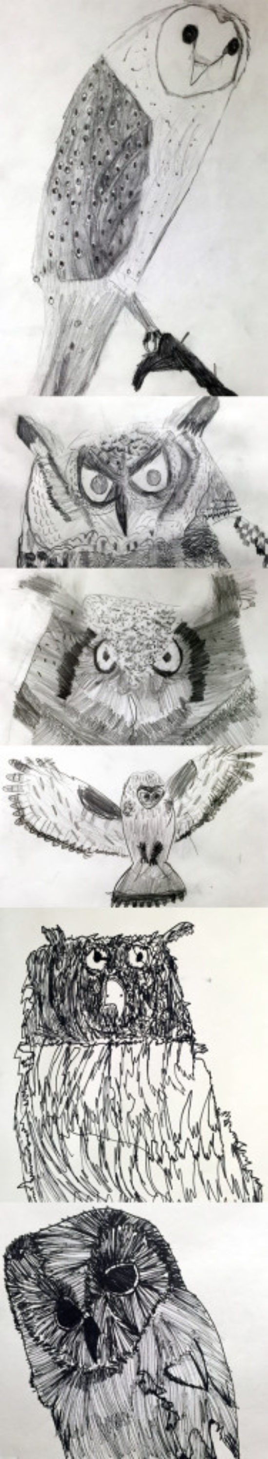 The Drawing Challenge Gallery