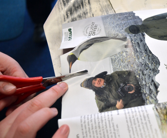 Finding and then cutting animals out of magazines