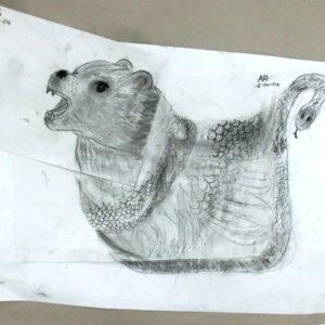 Chimera drawings