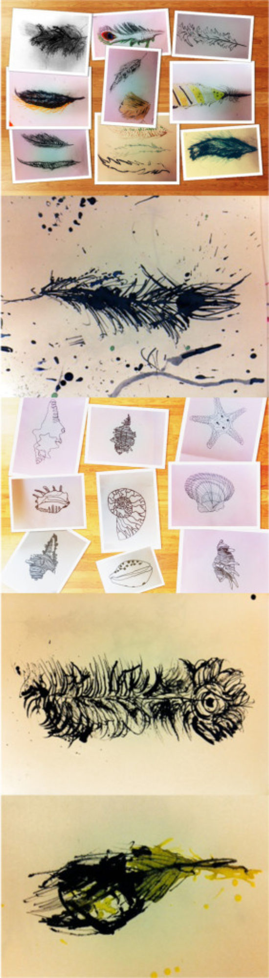 I am an art teacher in Kent who used the drawing challenge with children ranging from the ages of 8-11. For the feather drawings we used sticks and drawing inks which was challenging to control but produced some sensitive results.