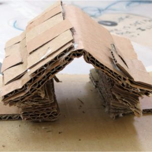 Visual Arts Planning: Cardboard and Paper