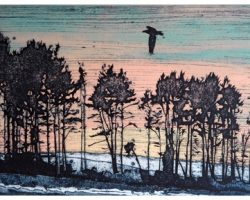 Artist Suzie Mackenzie shares her collagraph process with AccessArt.