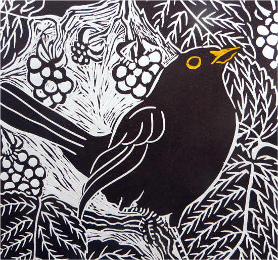 Visual Arts Planning: Drawing And Making Birds