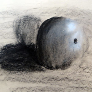 Paula Briggs introduces children to seeing and exploring tonal value with charcoal and white chalk. Paula is the director of AccessArt and author of Drawing Projects for Children (Black Dog Publishing).