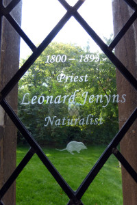 Window dedicated to naturalist Leonard Jenyns at St. Mary's Swaffham Bulbeck - photo by Aspirations learner