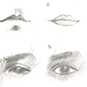 Introduction to Portraits