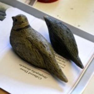Making clay birds from a mould