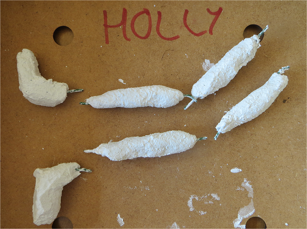 At this stage all the limb pieces look anonymous so don't forget to label them with your name!