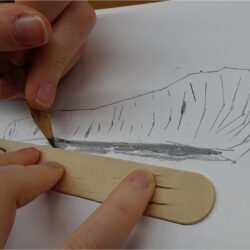 2 grades of pencil and a ruler in this drawing challenge! By Paula Briggs