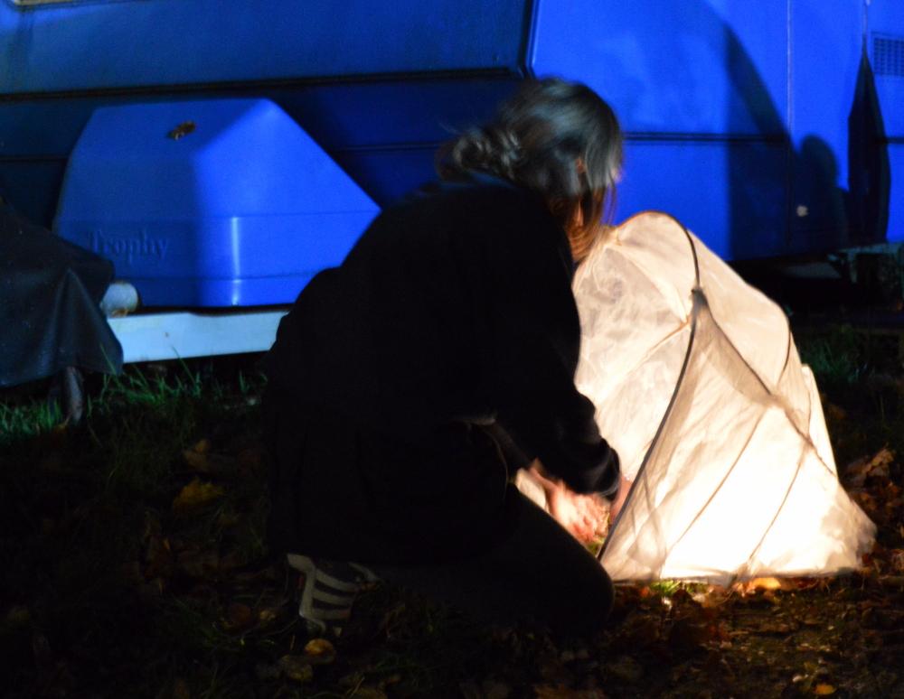 Lighting up the lanterns - SC