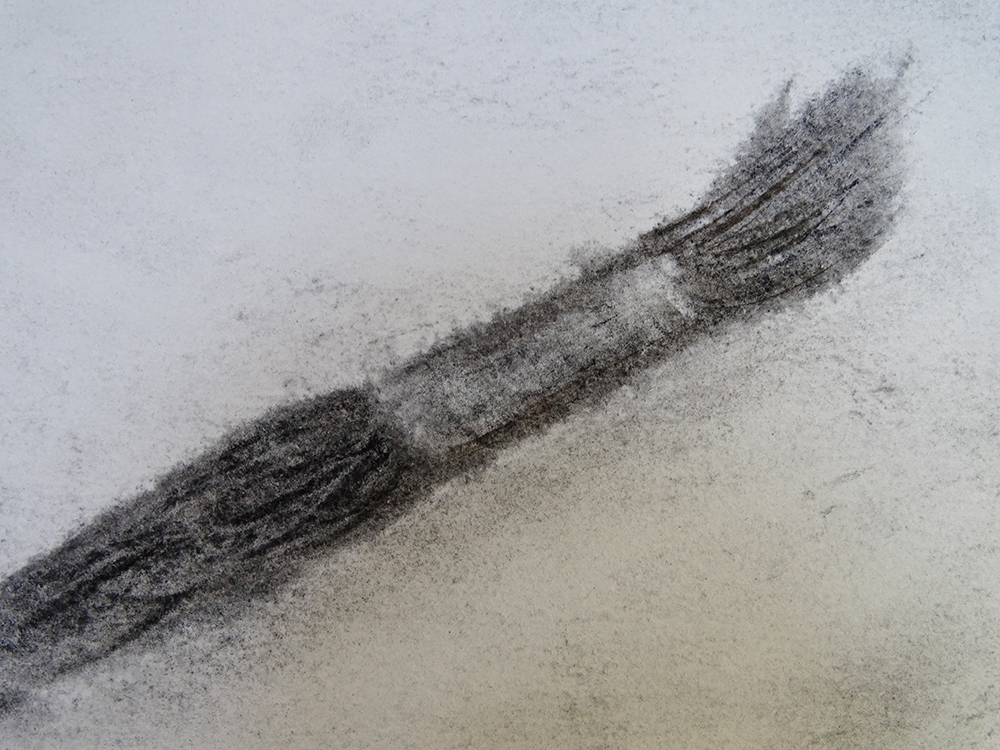 Sketchbook Exercise: Drawing Brushes with Charcoal