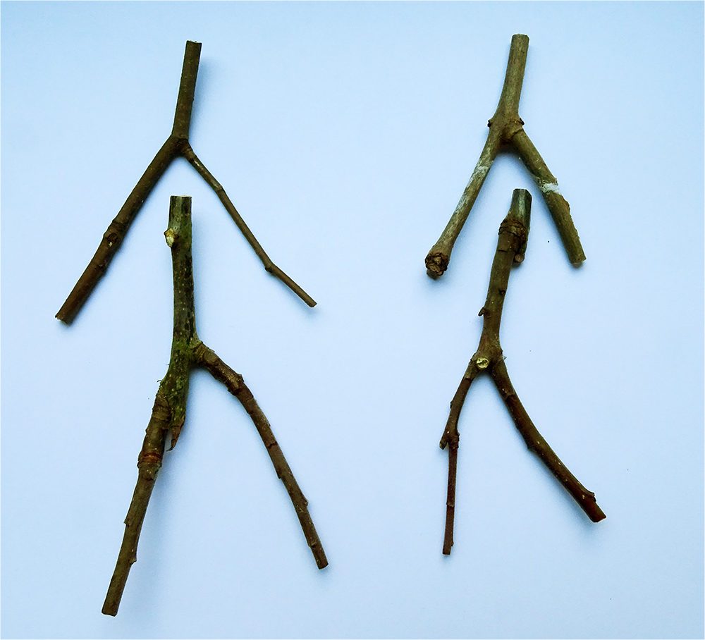 "two ""Y shaped sticks for each doll"
