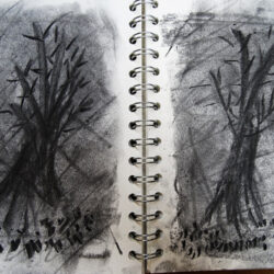Inspired by William Kentridge, Paula Briggs explores making charcoal animations in a sketchbook