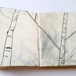 Paula Briggs introduces the thinking behind the Sketchbook Journey