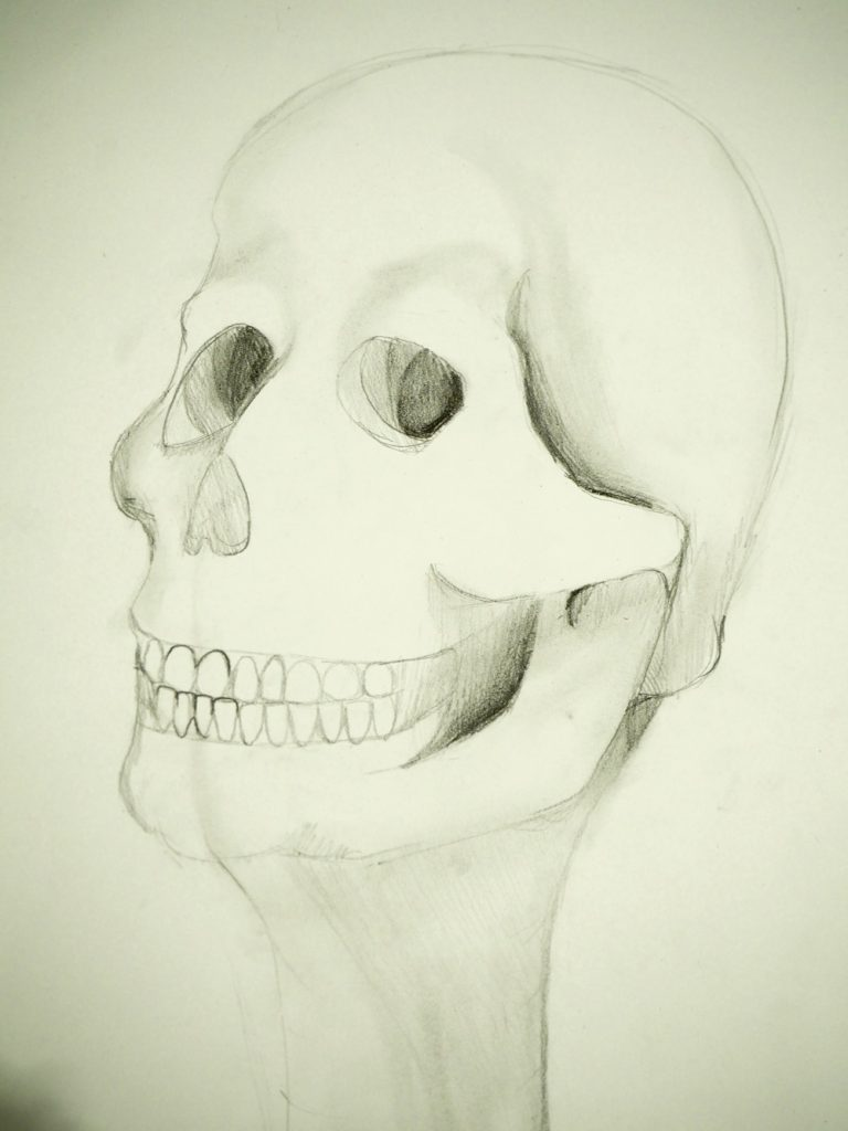 Pencil Skull