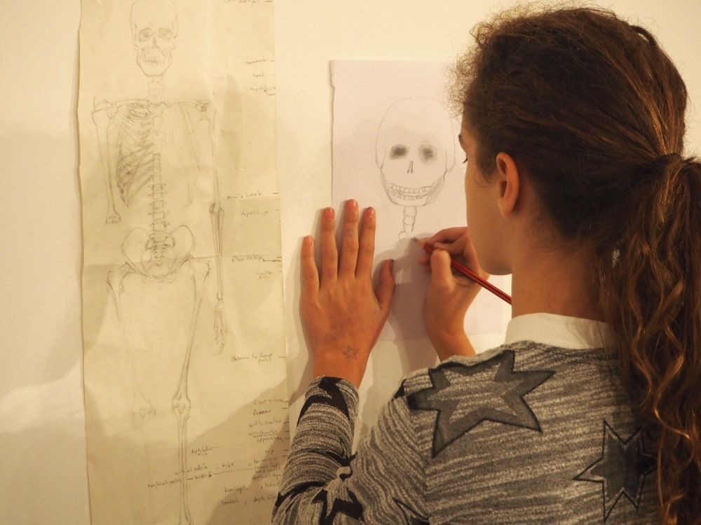 Studying a Skeleton Drawing
