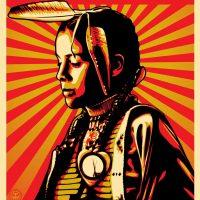 Large_Fairey_BlackHills_Indigenous_Amplifier-1