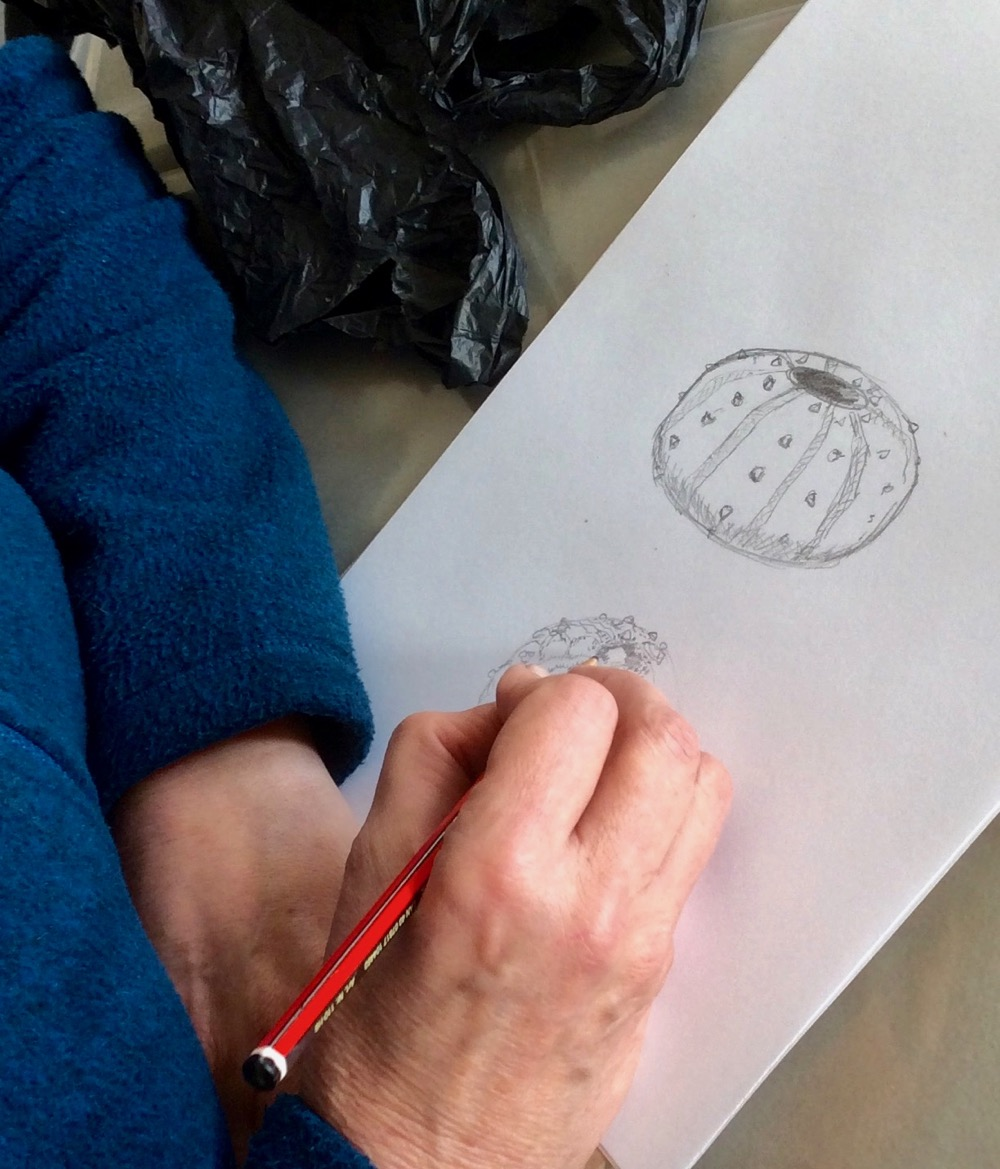 Drawing object with sight - Linda Green